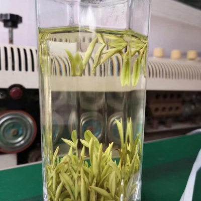 安吉白茶/前清茶/