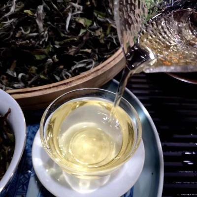 福鼎白茶荒野牡丹