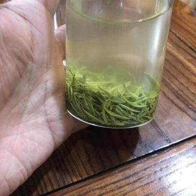 正宗信阳毛尖新茶250g