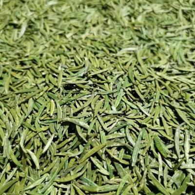 特级湄潭翠芽  芽型扁平、整齐色泽绿、香味栗香、回味甘爽,提供各种包装