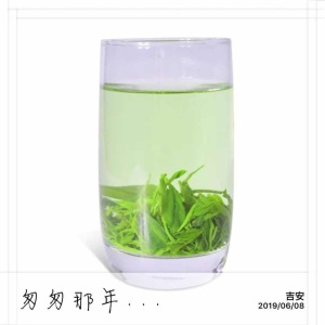 遂川狗牯脑绿茶(春珍)250g/盒