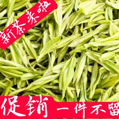 安吉白茶 白茶绿茶 2019明前特级新茶自产自销250g