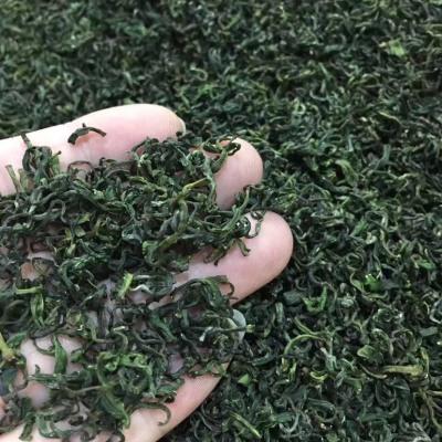 特级日照绿茶2019明前新茶散装浓香型高山茶叶500g礼盒装