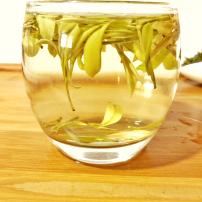 【免费试喝黄金芽】2020新茶黄金叶黄金茶安吉白茶高山绿茶50g散装