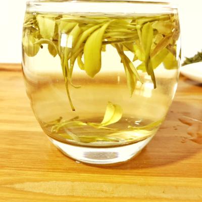 【免费试喝黄金芽】2019新茶黄金叶黄金茶安吉白茶高山绿茶50g散装