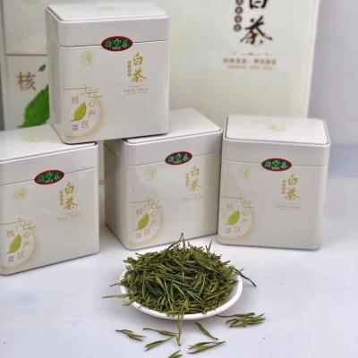 高山安吉白茶(500克)
