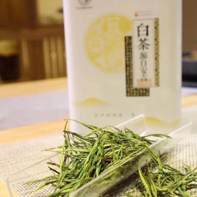 安吉白茶精品系列
