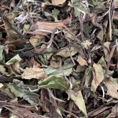 2016年磻溪湖林白露散茶