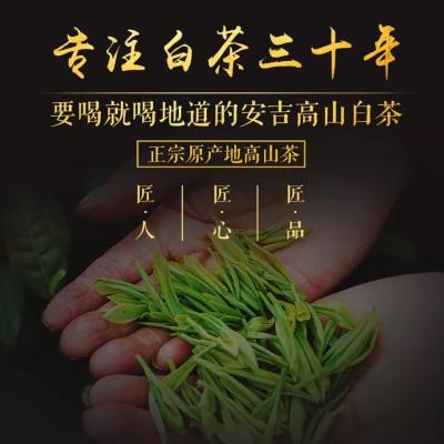 绿茶2019年新茶安吉白茶 特产正宗雨前特级珍稀茶叶500g散装袋装