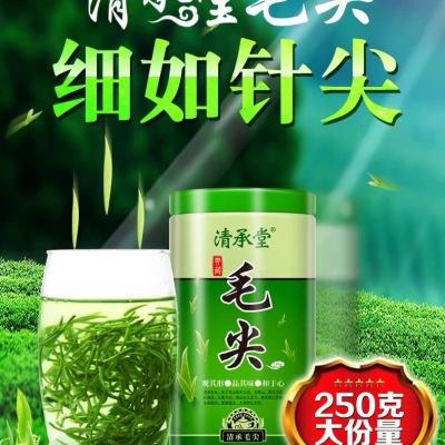 清承堂2020新茶叶信阳口味毛尖茶叶绿茶散装明前嫩芽特级浓香型