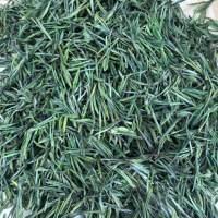 2019新茶高山绿茶白茶明前手工无公害白茶 250克罐装礼盒礼袋装