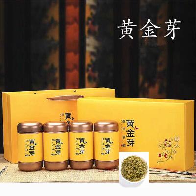 安吉白茶黄金芽2019新茶明前一级黄金芽250g礼盒装黄金叶黄金茶叶
