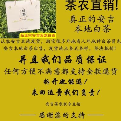 2019新茶叶正宗安吉白茶散装雨前一级绿茶共200g高山珍稀春茶礼盒
