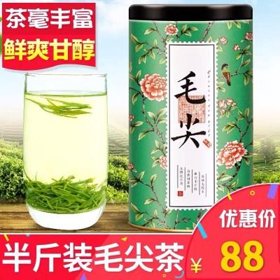 【拍下88元】绿茶茶叶 毛尖嫩芽浓香型茶半斤250g