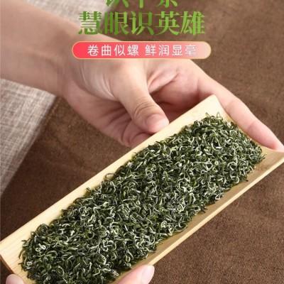 2020新茶 碧螺春 绿茶 明前茶