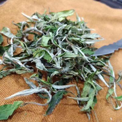 白茶,牡丹、500g/160元