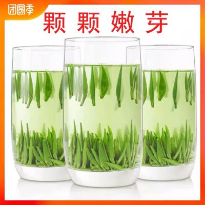 绿茶2020新茶信阳毛尖茶叶明前特级嫩芽高山雀舌毛尖自产自销250g