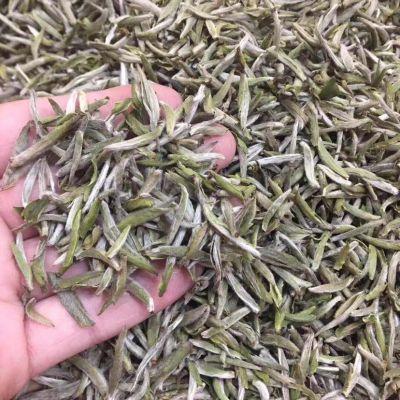 福鼎白茶2019新茶白毫银针首日芽散装特级茶叶500g