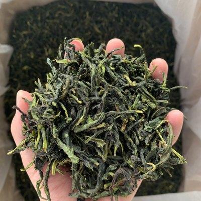 凤凰单丛茶蜜兰香特级潮州单枞乌龙茶新茶