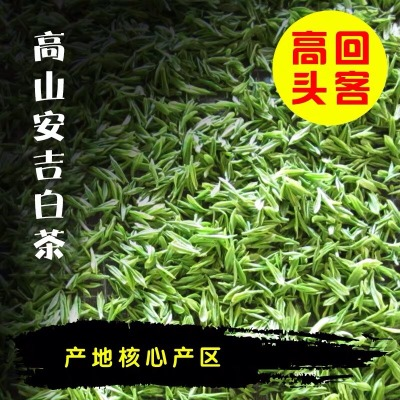 安吉白茶 高山明前绿茶 2019新茶 500g 珍稀高山白茶 正宗茶叶