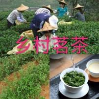 铁观音纯天然桂花香,茶农直卖第一手价,质量保证,不好包退,有信仰不多言