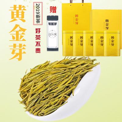 黄金芽茶叶特级安吉白茶新茶浓香绿茶叶罐装年货送礼礼盒装多规格