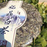 福鼎白茶牡丹王茶饼2015年牡丹王茶饼3000克 要礼盒另加50