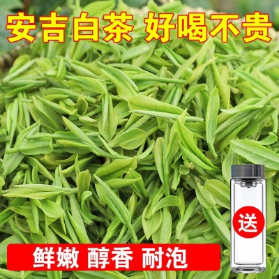 安吉白茶茶叶绿茶2020新茶春茶正宗雨前白茶高山茶浓香250G多规格
