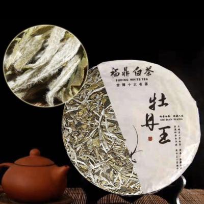 福鼎老白茶砖2006年白牡丹茶砖350克 福建特级茶叶
