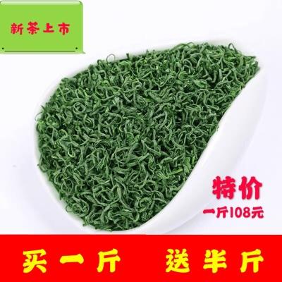 高山绿茶 新茶特级浓香型一斤袋散装500g炒青高山云雾茶