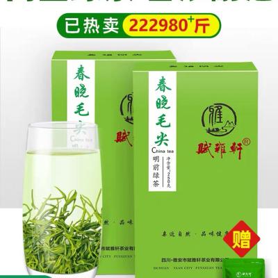 绿茶2020新茶叶特级春晓毛尖浓香型四川蒙顶山茶云雾毛峰散装500g