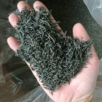 亏本促销 英德绿茶500克 买一斤送茶具一套