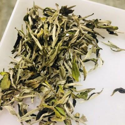 白牡丹,政和白茶,春茶上市了!!!500g