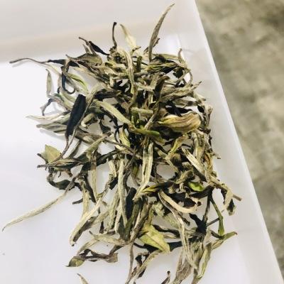 荒野白牡丹,政和白茶,2020春茶500g
