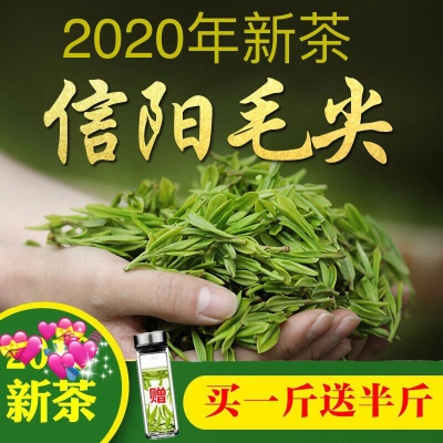绿茶【买一斤送半斤】信阳毛尖2020年新茶散装浓香型高山茶毛尖茶叶