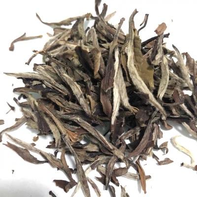 福鼎白茶2012年春茶正宗陈年老白茶药香牡丹王高山白牡丹散装500g