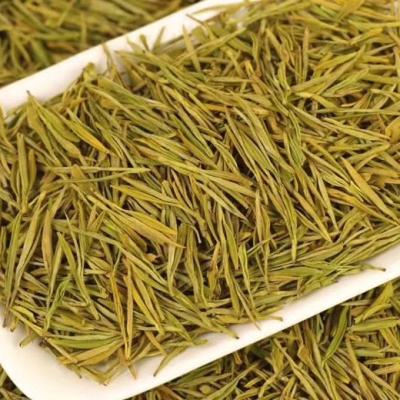 2021新茶黄金叶黄金芽新茶雨前特级品质保证送礼品安吉白茶黄金芽