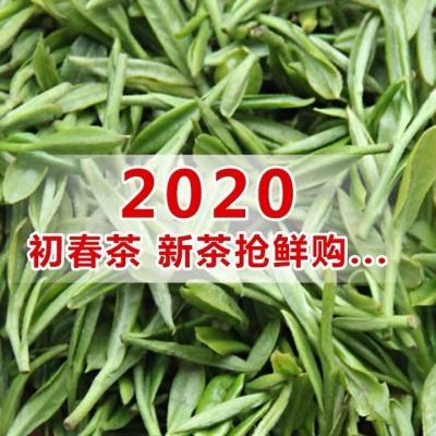 【现货】绿茶2020新茶特级蒙顶甘露蒙顶山茶早春头采嫩芽高山茶叶