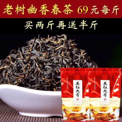 500g 英德红茶 英红九号 英红9号 经典老树英九 买两斤送半斤