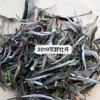 2019荒野牡丹 茶青:福鼎磻溪镇仙蒲村 包装:散装 工艺:碳焙