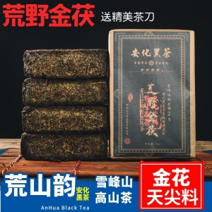 天茯茶五年陈1KG金花黑茶陈年湖南安化安化黑茶金花茯砖正宗茶叶