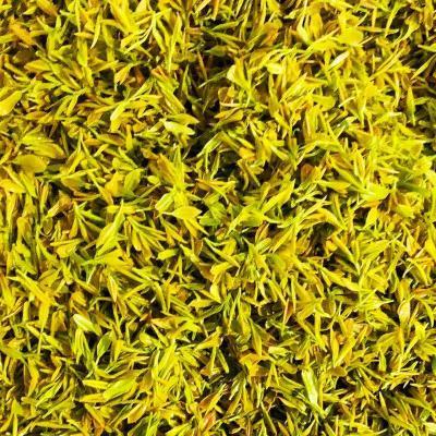 2020年黄金芽茶叶新茶 绿茶 250g明前特级春茶黄金牙安吉白茶茶叶
