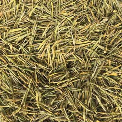 特价 安吉原产地黄金叶 黄金茶 顺丰包邮 简装200克 图片实物4小包
