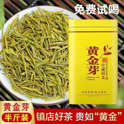 特级头采黄金芽茶叶2020春新茶250g正宗高山安吉白茶罐装绿茶礼盒