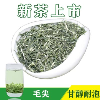 2021新茶毛尖茶叶绿茶散装批发 明前春茶 直销绿茶250g 礼盒包装
