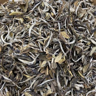 福鼎白茶2017年散茶 荒野小白茶 高山原生态
