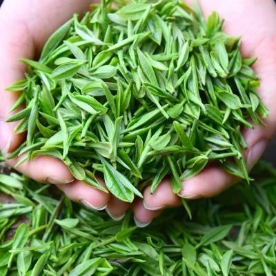 2020年高山绿茶  口感醇厚 500g包邮 购买一斤赠送玻璃壶一套