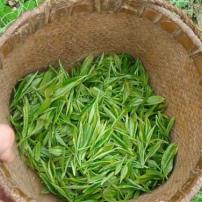 毛峰,2020年新茶,口感纯正,现在新店开业做活动,买一斤,送一斤。