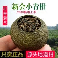 正宗新会小青柑【正品】头采柑 柑普茶 柑橘茶 新会陈皮普洱茶熟500g