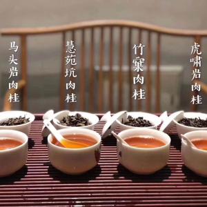 大红袍茶叶武夷山正宗岩茶乌龙茶水仙肉桂散装新茶口感好浓香型试喝套装